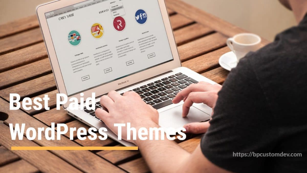 Paid WordPress Themes