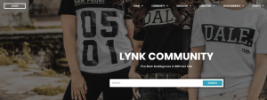 lynk theme