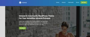 Best WordPress Community Themes