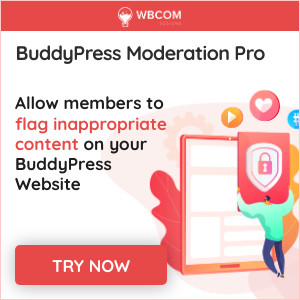 BuddyPress Modration Pro