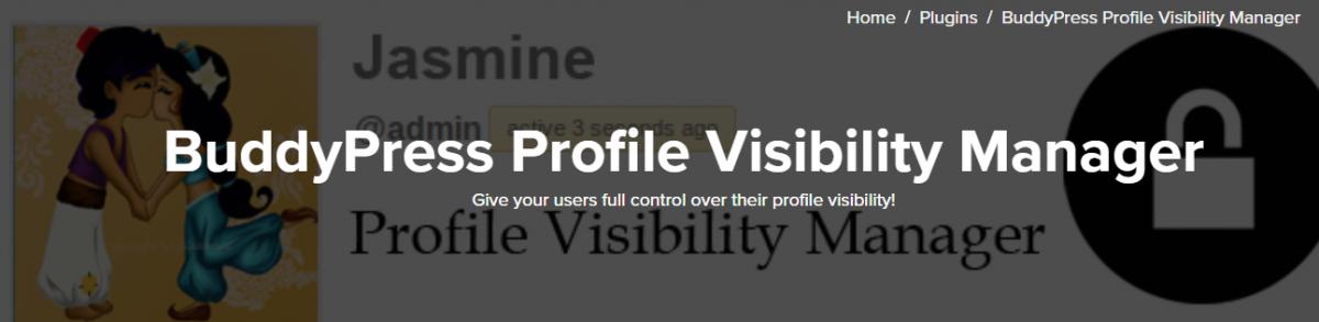 BuddyPress Profile Visibility Manager